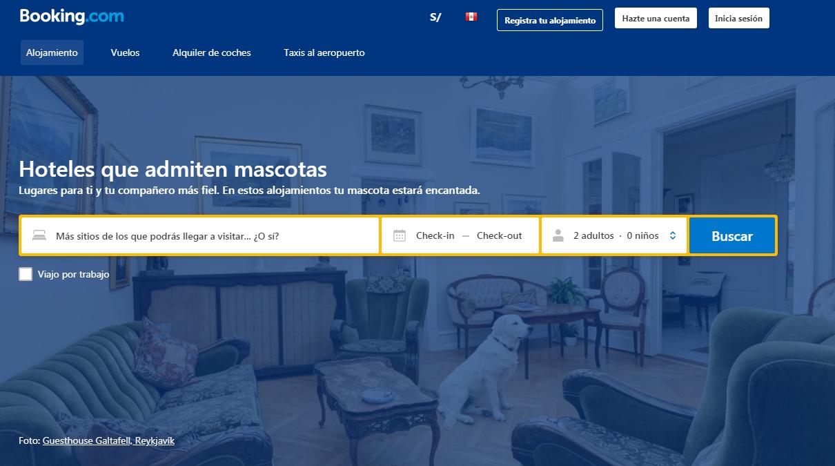 Buscador de Hoteles que Aceptan Mascotas.PNG